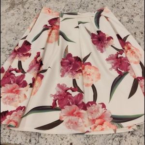 Potters Pot Beautiful Lined Skirt